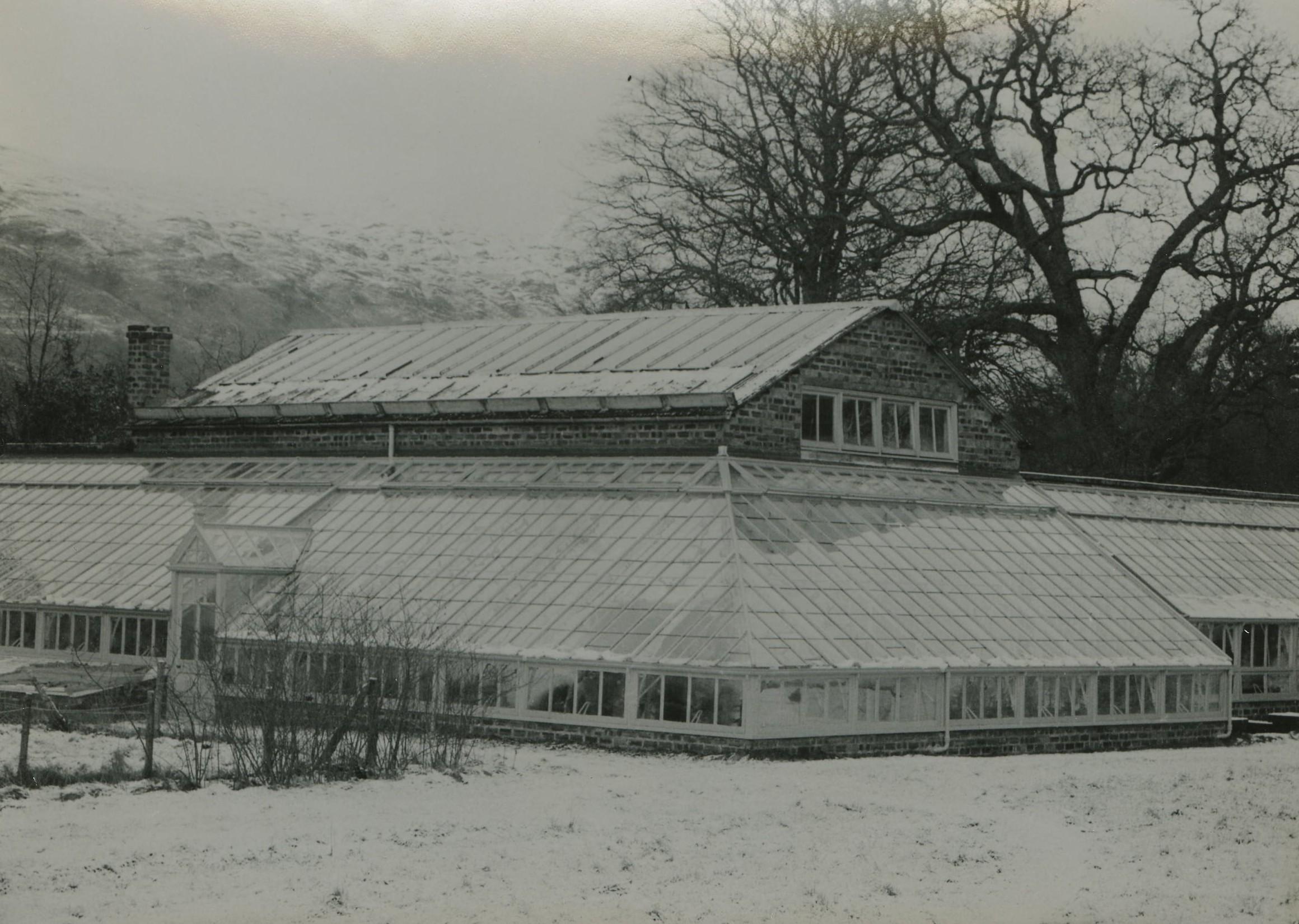 Greenhouses Ardkinglas Gardens