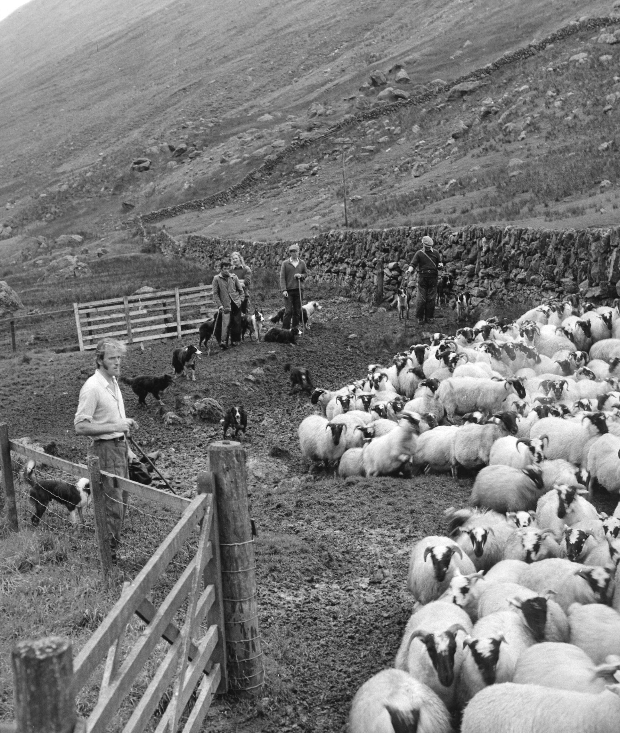 Gathering at Butterbridge