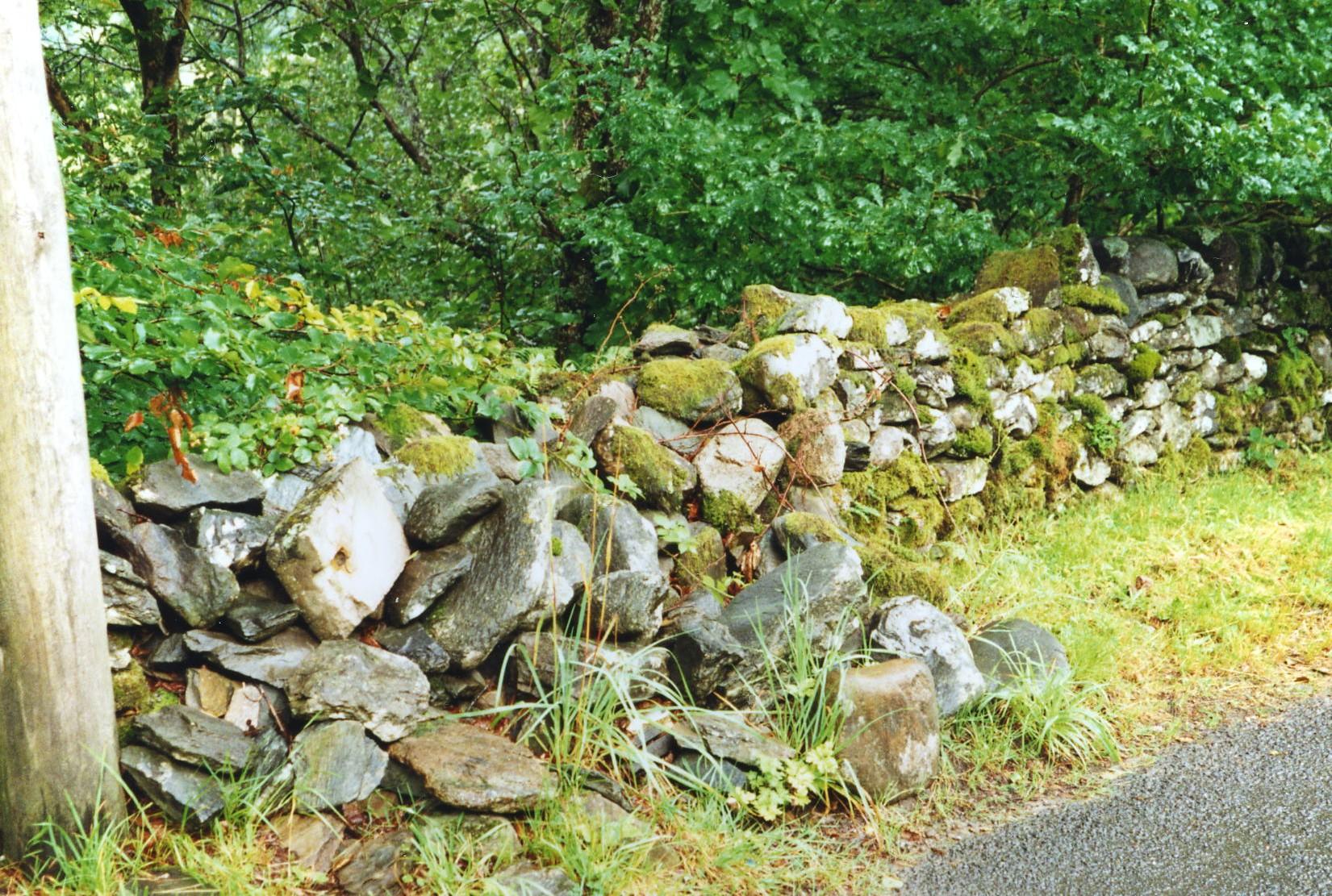 Dry Stone Dyke