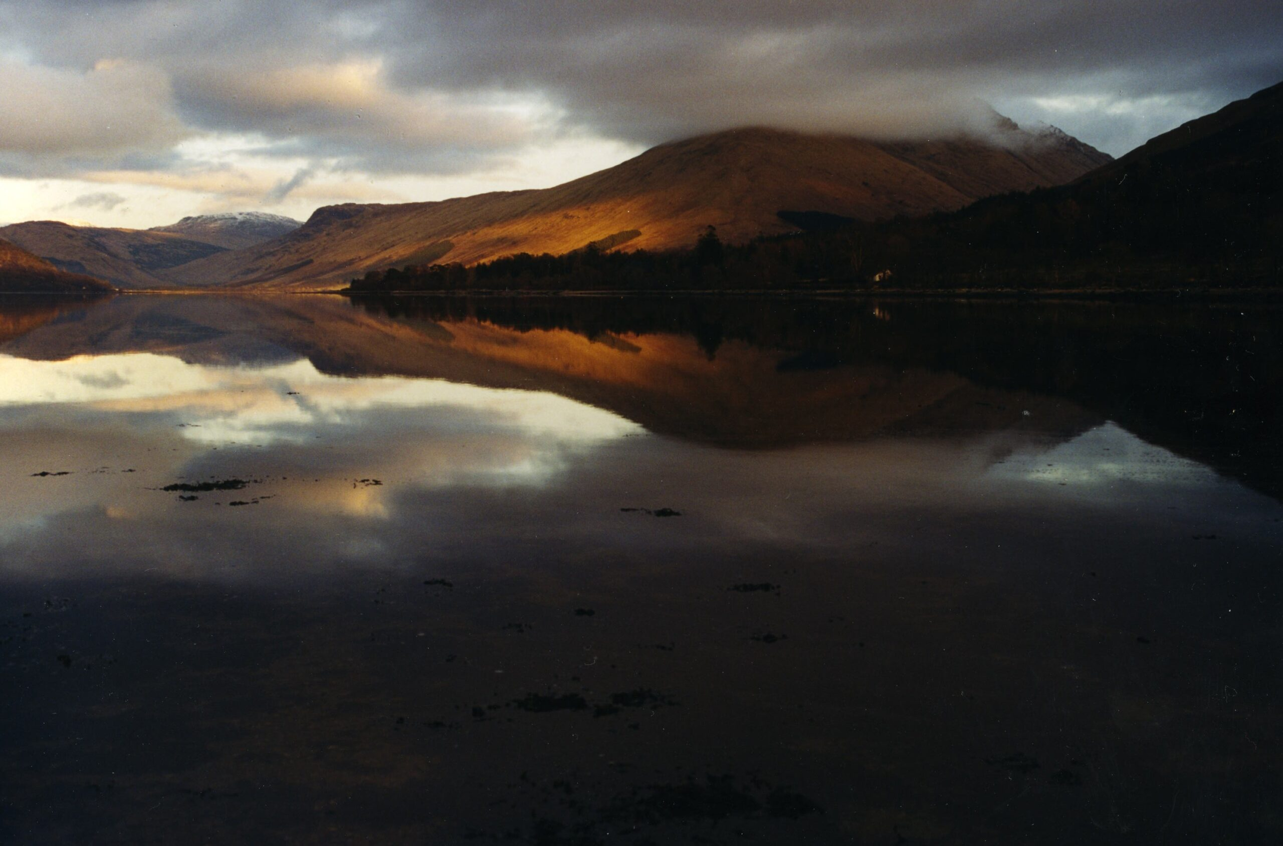 Head of Loch Fyne