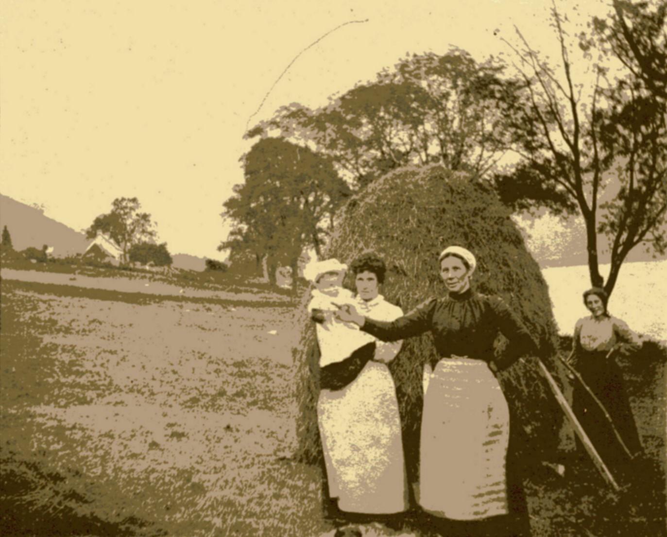 Making hay at Cuil Beag