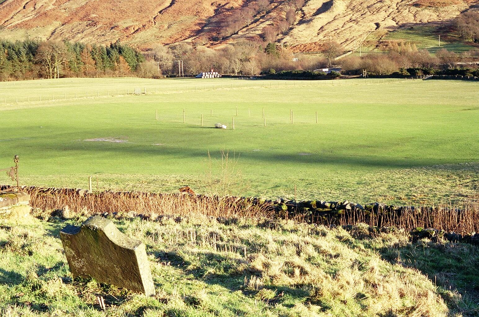 Clachan Fields