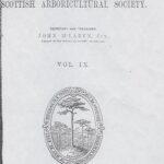 Record of trees on Ardkinglas Estate